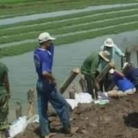 An Giang nỗ lực khắc phục hậu quả lũ lụt