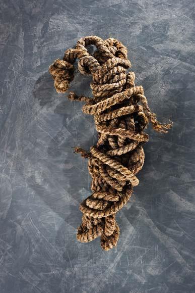 """""""Lời nguyền"""" của xác ướp 5300 năm bí ẩn - 12"""