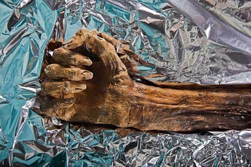 """""""Lời nguyền"""" của xác ướp 5300 năm bí ẩn - 9"""