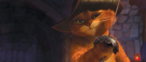 Mèo Đi Hia: Không chỉ là huyền thoại! - 5