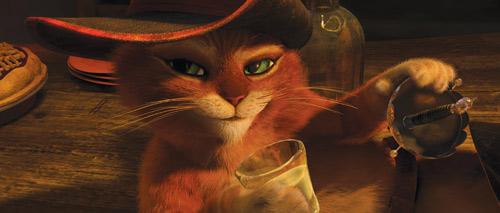 Mèo Đi Hia: Không chỉ là huyền thoại! - 6