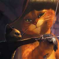 Mèo Đi Hia: Không chỉ là huyền thoại!