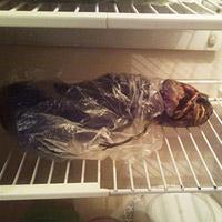 Nga: Xác người ngoài hành tinh trong tủ lạnh