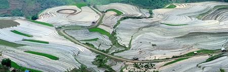 Lào Cai - Mùa nào cũng đẹp - 2