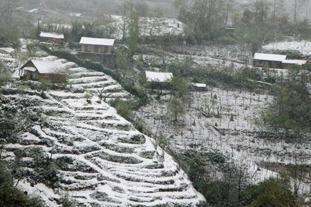 Lào Cai - Mùa nào cũng đẹp - 4