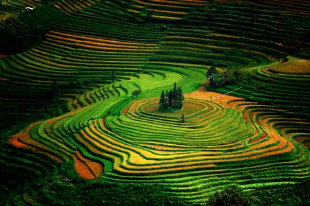 Lào Cai - Mùa nào cũng đẹp - 10