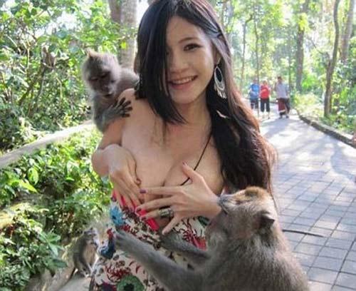 Đố vui: Tình huống khó đỡ với lũ khỉ - 1