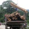 Lật xe gỗ lậu: Triệu tập thêm 2 kiểm lâm
