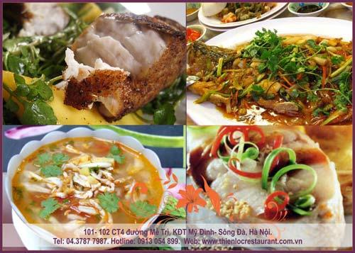 Thưởng thức cá vược tươi sống tại nhà hàng Thiên Lộc - 8