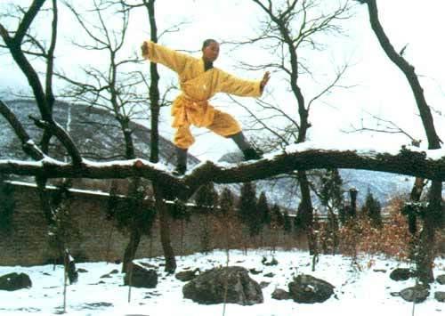 Xem cao tăng Thiếu Lâm thi triển tuyệt kỹ - 15