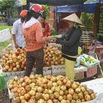 Thị trường - Tiêu dùng - Trái cây Trung Quốc lại tràn về miền Tây