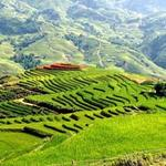 Du lịch - 10 điểm du lịch mùa thu hấp dẫn nhất Đông Nam Á