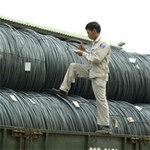 Tài chính - Bất động sản - Chi tiết dự báo tăng trưởng Việt Nam của ADB