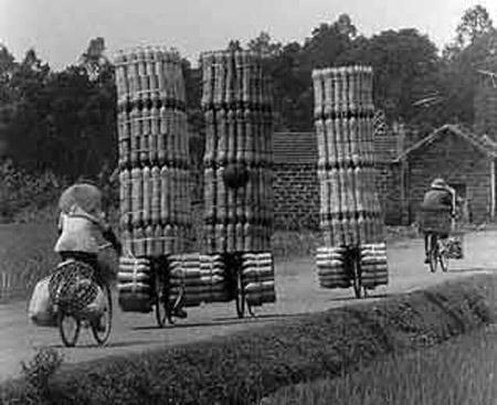 Những ảnh chỉ có ở Việt Nam (117) - 1