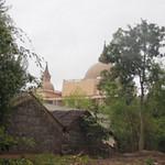 Tin tức trong ngày - Vụ mất trộm sừng tê giác: Xã nghèo chấn động