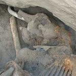 Phi thường - kỳ quặc - Cậu bé 11 tuổi phát hiện voi ma mút