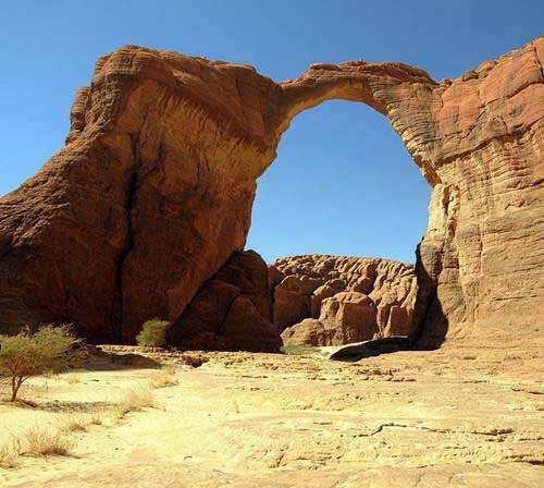 'Khu vườn bí mật' giữa lòng sa mạc Sahara - 5