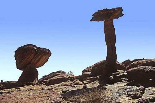 'Khu vườn bí mật' giữa lòng sa mạc Sahara - 7