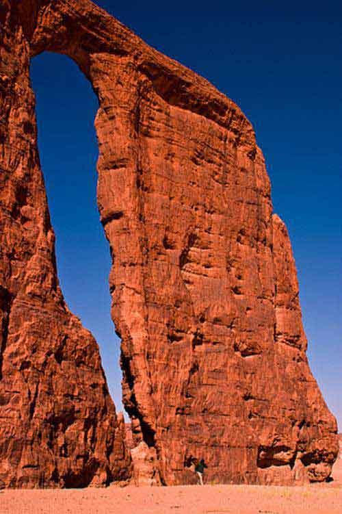 'Khu vườn bí mật' giữa lòng sa mạc Sahara - 4