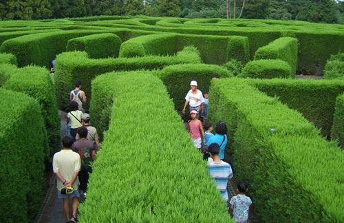 Những công viên đệ nhất kỳ quặc tại Hàn Quốc - 11