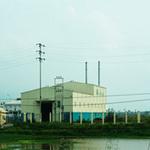 Thị trường - Tiêu dùng - Trồng sắn ethanol: Sự đổ vỡ được báo trước