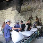 Thị trường - Tiêu dùng - Gạo Việt đang tự làm mất thị trường