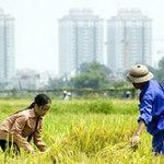 Tài chính - Bất động sản - Gần 80% vụ khiếu nại từ lĩnh vực nhà đất