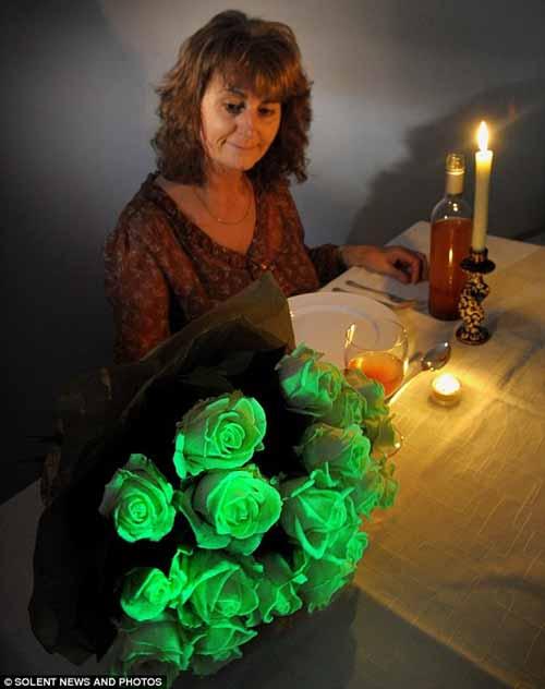Bó hoa phát sáng trong bóng tối - 3