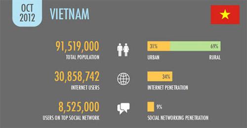 30,8 triệu người Việt Nam sử dụng Internet - 1