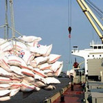 Thị trường - Tiêu dùng - Gạo tăng giá nhờ tin bán cho Indonesia