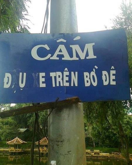 Những hình ảnh chỉ có ở Việt Nam (131) - 5