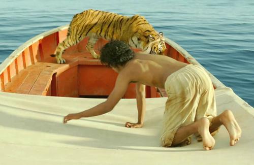 Phim cậu bé sống với hổ trên biển đến VN - 2