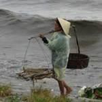 Tin tức trong ngày - Thanh Hóa: Bão trái mùa, ngư dân chủ quan?