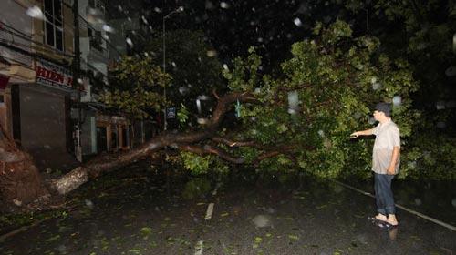 Siêu bão Sơn Tinh tàn phá miền Bắc - 2