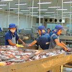 Thị trường - Tiêu dùng - 80% nhà máy thủy sản bên bờ phá sản