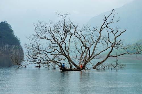 Kinh nghiệm du lịch bụi Tuyên Quang - 4