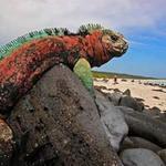 Du lịch - 10 hòn đảo tạo sửng sốt nhất Trái đất