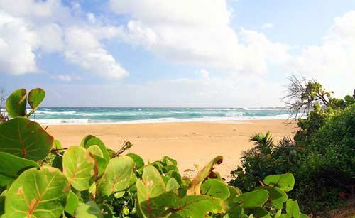 Khám phá cảnh đẹp của Puerto Rico - 2
