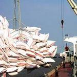 Thị trường - Tiêu dùng - Lo Thái Lan giảm giá xuất khẩu gạo