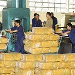 Thị trường - Tiêu dùng - TQ đứng đầu về nhập gạo và cao su của VN