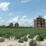 Tài chính - Bất động sản - Thu hồi gần 10 ngàn tỷ đồng tiền sử dụng đất