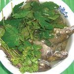 Ẩm thực - Khoái như canh cá giò nấu lá thông gai