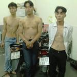An ninh Xã hội - Bắt nóng băng cướp giật trên phố Sài Gòn