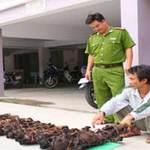 Tin tức trong ngày - 42 tháng tù cho kẻ giết voọc chà vá