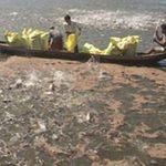 Thị trường - Tiêu dùng - Vét sạch cá tra nguyên liệu để xuất khẩu