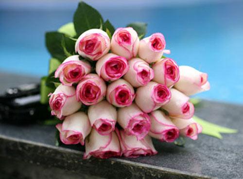 Chiêm ngưỡng 10 loài hoa quyến rũ nhất thế giới - 10