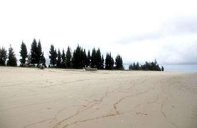 Khám phá bãi biển dài nhất Việt Nam - 4