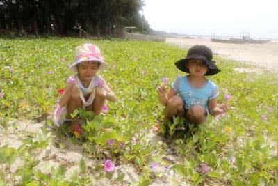 Khám phá bãi biển dài nhất Việt Nam - 6