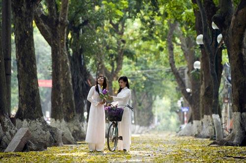 8 địa điểm chụp ảnh đẹp ở Hà Nội - 6