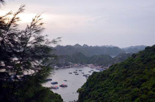 Đảo Cát Bà và 9 điều hấp dẫn - 3
